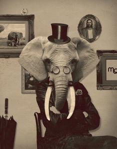 elephant-room